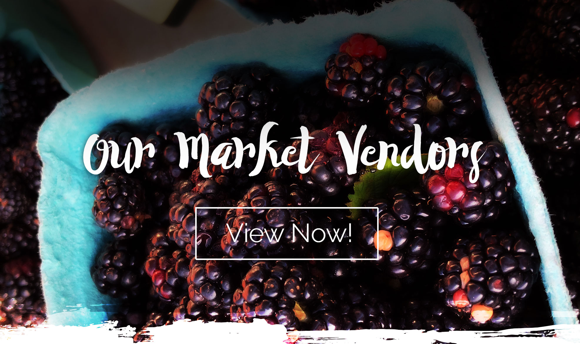 Our Market Vendors
